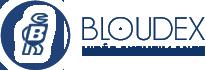 Bloudex Vidéo Surveillance